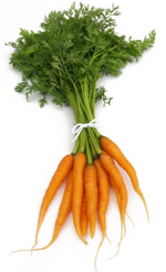 carrots chemical nailcarehq